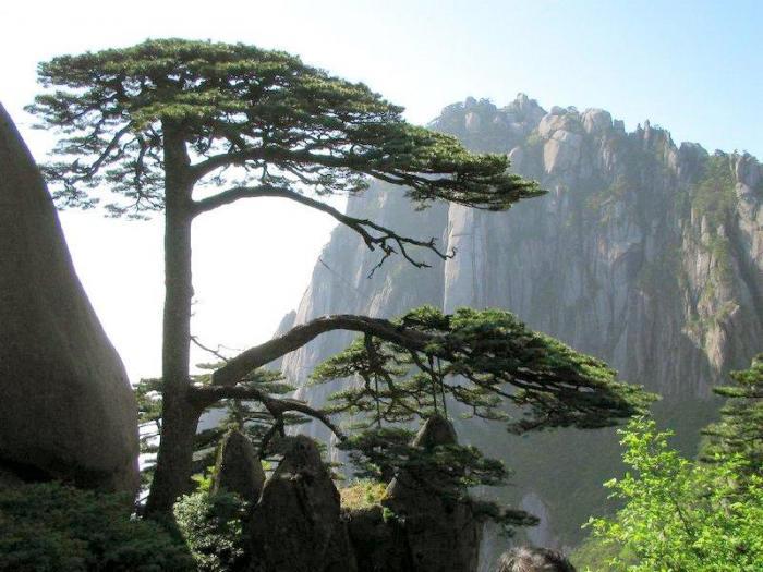 Желтые горы Хуаншань
